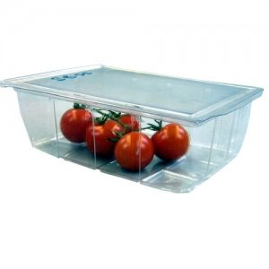 Clear Salad Box with Hinged Lid